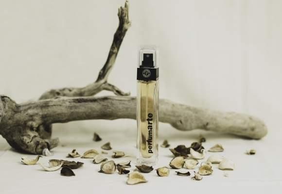Top 5 perfumes masculinos para primavera.
